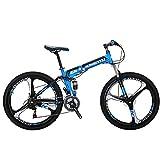 EUROBIKE Kingttu G6 21Speed 26Inch Moumtain Bike 3Spoke Wheels Dual Disc...