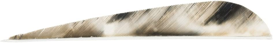 B0000AVEC4 EBBQ Gateway Feathers 4-Inch Parabolic TreBark Camo 4 Right Wing Feather (100-Pack), Tree Bark 51smfS6PCEL