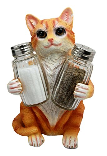 salt and pepper cat - 8
