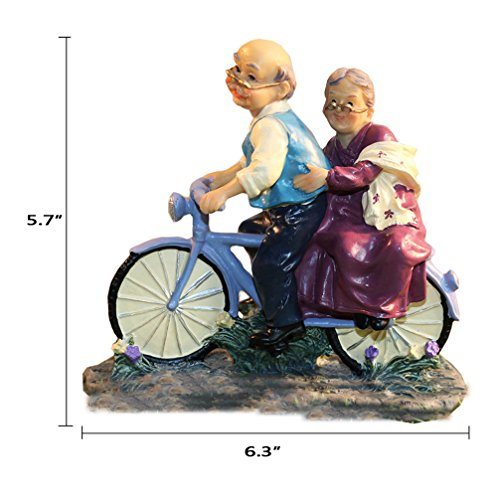 Coostyle Cycling Elderly Couple Figurines, Loving Old Age Life Resin Home Decorations with Gift Card for Mother's day Father's day Anniversary (Riding)