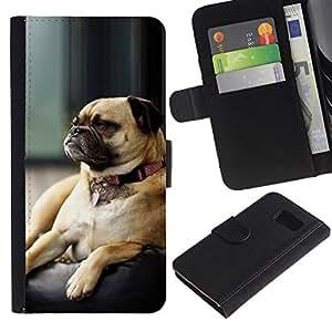 KingStore / Leather Etui en cuir / Samsung Galaxy S6 / Perro del barro amasado gru?ón Small Brown dormir lindo