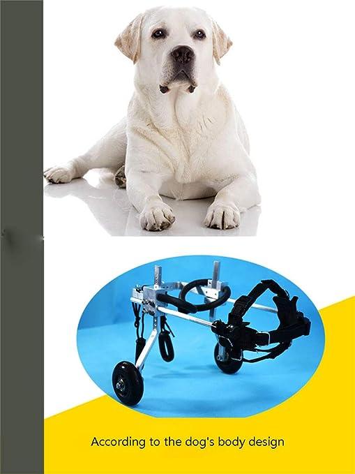 Silla de ruedas para mascotas, tamaño para perros pequeños Carrito de acero inoxidable Mascota / Gato Perros en silla de ruedas Rehabilitación de patas ...