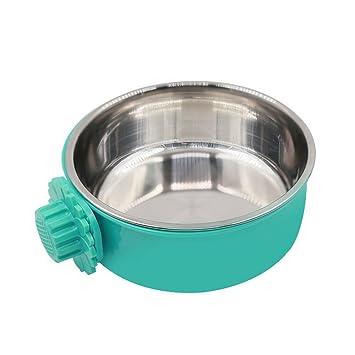 Amazon.com: Daycount - Comedero para mascotas, cuenco de ...