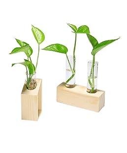 Gaddrt Plant Transparent Vase Creative Hydroponic Wooden Frame Coffee Shop Room Decor (G)