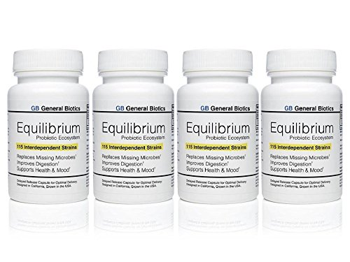 Equilibrium Probiotic Supplement with Prebiotic - Daily Time Release - 120 Effective Easy To Swallow Capsules - Highest Strain Count In The World - 4 Bottles by Equilibrium