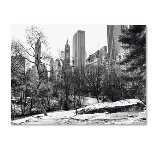 (Central Park  by CATeyes, 16 by 24-Inch Canvas Wall Art )