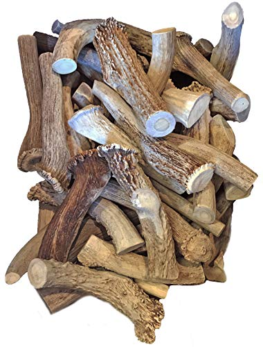 WhiteTail Naturals XL Jumbo Premium Deer Antlers for Dogs by The Pound (1 Pound Pack) All Natural Extra Large Thick Antler Chews | X Large Dog Chew for Aggressive Chewers | Hard, Long Lasting Shed