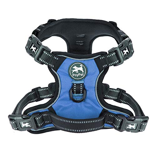 PoyPet 2019 Upgraded No Pull Dog Harness with 4 Snap Buckles, 3M Reflective with Front & Back 2 Leash Hooks and an Easy Control Handle [NO Need Go Over Dog's Head] (Blue,L) (Dog Blue Head)