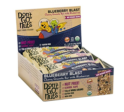 Bar Egg - Don't Go Nuts Nut-Free Organic Snack Bars, Blueberry Blast, Chewy Granola Bar with Blueberries, 12 Count
