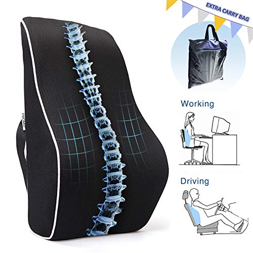 PROMIC Memory Foam Lumbar Support Back Cushion w/Carry Bag, Ergonomic Lumbar Pillow Relieves Sciatica Pain - 3D Ventilative Mesh Lumbar Support Pillow for Office Desk Chair Car Seat Couch and Sofa