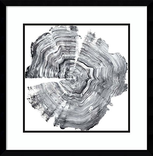 Amanti Art Framed Art Print 'Tree Ring Abstract IV' by Ethan Harper: Outer Size x 23'' 23x23 by Amanti Art
