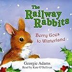 Berry Goes to Winterland   Georgie Adams
