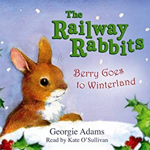 Berry Goes to Winterland Audiobook