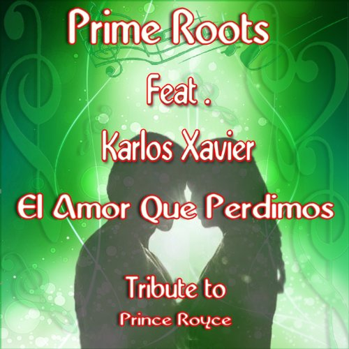 Amor Karaoke - El Amor Que Perdimos (Karaoke Version) (Originally Performed by Prince Royce)