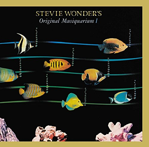 Check expert advices for stevie wonder vinyl musiquarium?