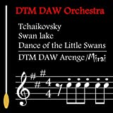 Tchaikovsky / SwanLake / Dance of the Little Swans
