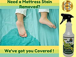 GONE FOR GOOD -BIG 32oz- Super Enzymatic Urine Odor Stain Remover, Eliminate Strong Dog & Cat Pee Smell-Clean Carpet- Rug- Dog Beds Floor- Enzyme Neutralizer Spray (Quart)