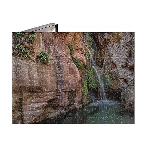 252 Piece Puzzle of USA Arizona Grand Canyon Colorado River Float Trip Elves Chasm (Grand Oasis)
