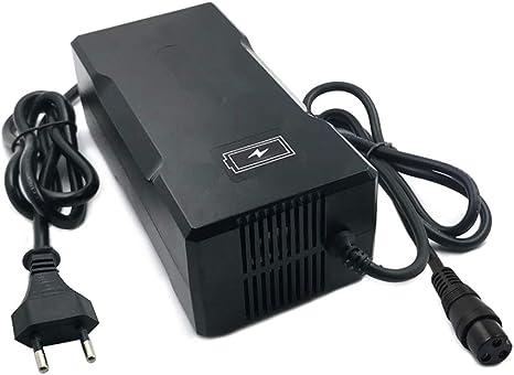 YZPOWER 42V 5A Cargador de batería de Litio para 10S 36V Batería ...