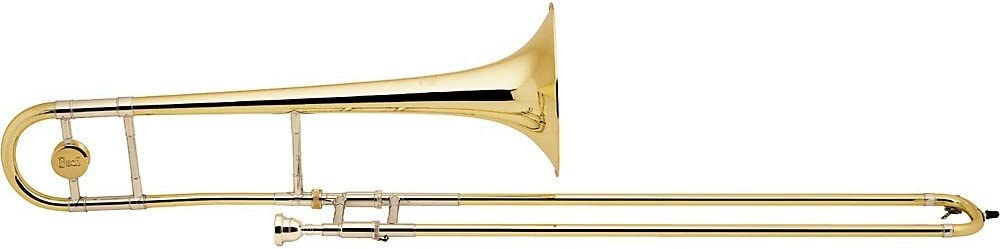 Bachmann lt36 g Stratocaster Stradivarius en B: Amazon.es: Instrumentos musicales