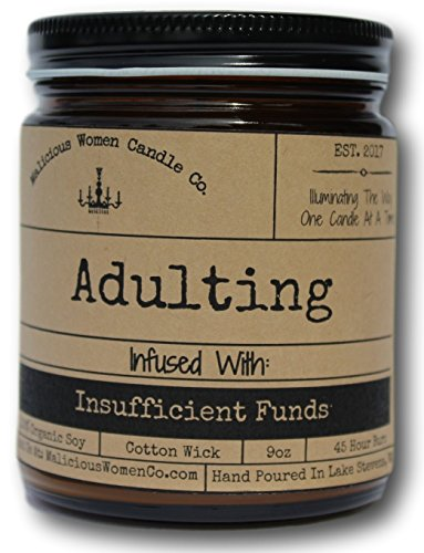 Fund Jar - Malicious Women Candle Co - Adulting, Espresso Yo' Self Infused Insufficient Funds, All-Natural Organic Soy Candle, 9 oz