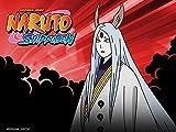 Naruto Shippuden Uncut Season 8 Volume 5