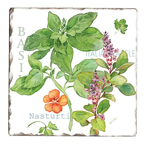 Counter Art Tumbled Tile Coasters (Set of 4), Culinary Herbs (Herb Tiles)