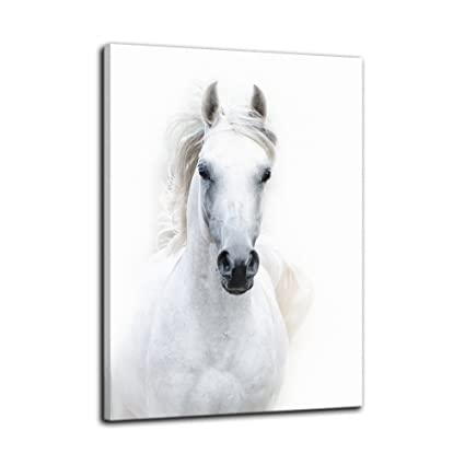 d8238461609 AMEMNY Wall Decor for Living Rooms Modern White Horse Painting Canvas Art  Home Decor Wall Artwork