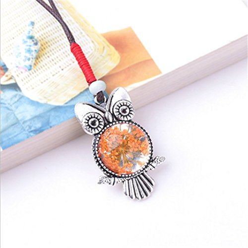 Female Sweater Chain Owl Cartoon Plant Specimens Dried Flower Necklace Orange