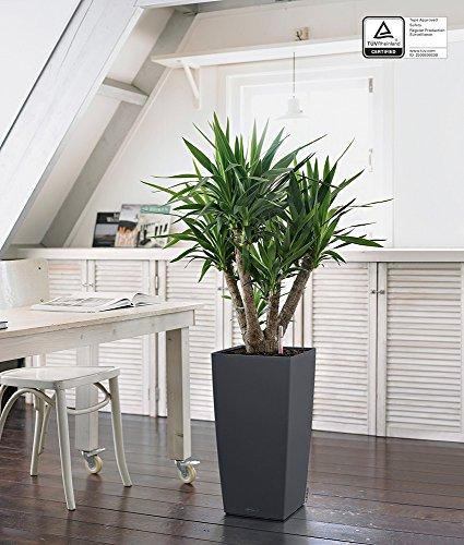 lechuza cubico color 30 pflanzgef mit erd bew sserungs system schiefergra ebay. Black Bedroom Furniture Sets. Home Design Ideas