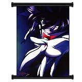 Casshern Sins Anime Fabric Wall Scroll Poster (31