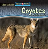 Coyotes Are Night Animals, Joanne Mattern, 0836878477