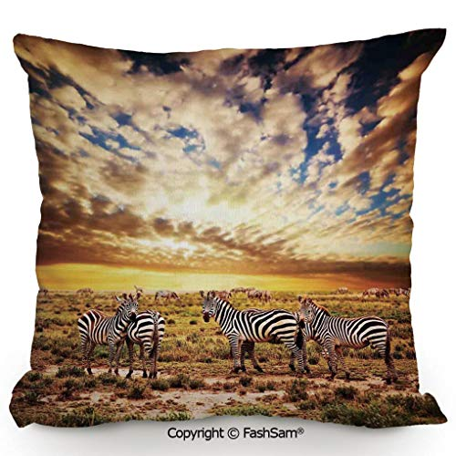 FashSam Decorative Throw Pillow Cover Dreamy Photo of Savannahs at Sunset with Zebras on The Grassland Dramatic Sky Wild for Pillow Cover for Living Room(18