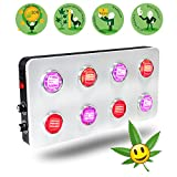 LED Grow Light COB Dimmable 12-Band 2 Dimmers BloomBeast B800 800w for Hydroponic Cultivation Horticulture Medical Indoor Plants Veg Flowering(High Yield) Review