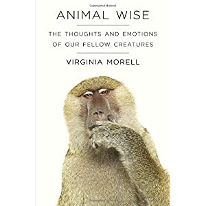 Learn more about the book, Animal Wise: The Thoughts & Emotions of Our Fellow Creatures