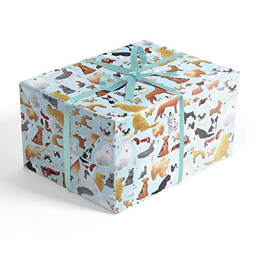 Dog Breeds Premium Folded Wrapping Paper with Border Collie, Husky, Chihuahua and Whippet, 2' x 10' Birthday Folded Gift wrap, Hoot LerouxTM ()