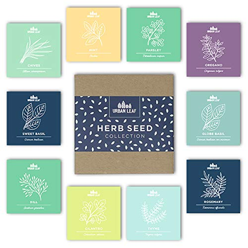 Herb Seed Kit - Non GMO - Compact Varieties for Indoor and Urban Spaces (Basil Seeds, Cilantro, Dill, Globe Basil, Mint, Parsley, Chives, Oregano, Rosemary and Thyme)