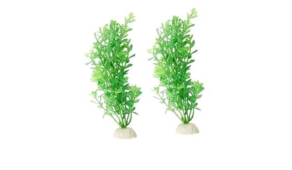 Amazon.com : eDealMax 2-pieza de plástico acuario de hierba Artificial Planta de agua Conjunto, Verde : Pet Supplies