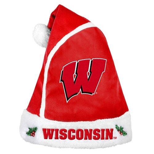 NCAA Wisconsin Badgers 2015 Basic Santa Hat, Red