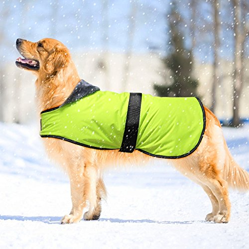 Dog Winter Coat, Waterproof Warm Fleece Dog Jacket for Cold Weather, Reflective Dog Safety Vest with Adjustable Buckles Suit for Small Medium Large Dogs& Safe at Night Walk (XXL, Green)