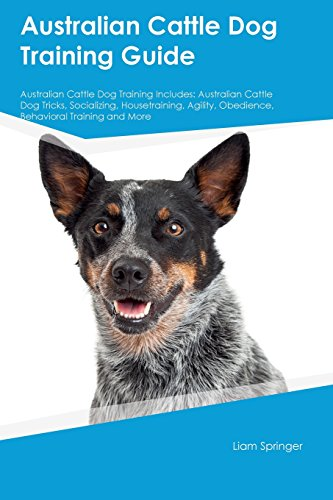 Australian Cattle Dog Training Guide Australian Cattle Dog Training Includes: Australian Cattle Dog Tricks, Socializing, Housetraining, Agility, Obedience, Behavioral Training and More ()