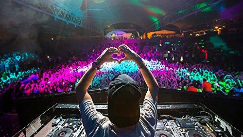 (Avicii DJ Concert Heart Baseball cap Hands Wall Art, Pop Art, Poster, Art Prints | Rare Posters)