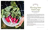 The Family Garden Plan: Grow a Year's Worth of