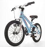 Sprinter 16 Pedal Bike Blue