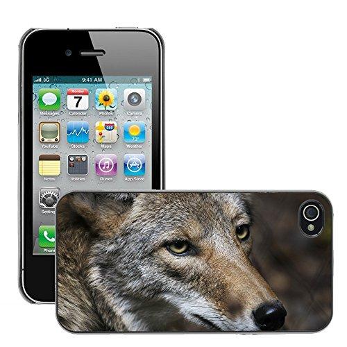 Premio Sottile Slim Cassa Custodia Case Cover Shell // V00002119 Coyote // Apple iPhone 4 4S 4G