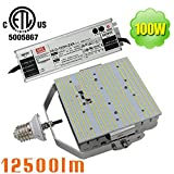 100 Watt E39 Mogul LED Gas Canopy Retrofit (250W HID Equivalent) 120V 240 Volt 277 Volt Daylight 5700K Car Wash Church High Bay LED Retrofit Light