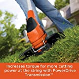 BLACK+DECKER 3-in-1 Lawn Mower, String Trimmer