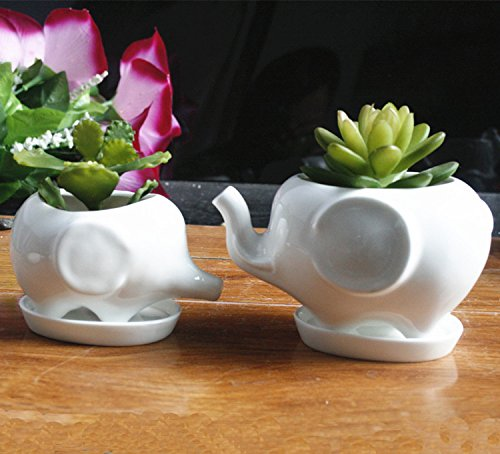Elephant Pot (Gift Pro Elephant Plant Window Boxes With Tray Set of 2 Cute Elephant Flower Pot,Modern White Ceramic Succulent Planter Pots / Tiny Flower Plant Containers (Style 2))