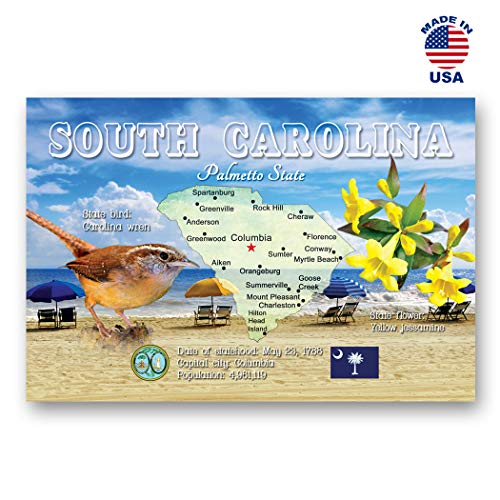 (SOUTH CAROLINA MAP postcard set of 20 identical postcards. SC state map post cards. Made in)
