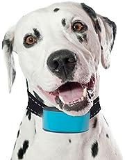 Collar de seguridad para perro de Hotdog con luz LED, recargable por USB, gran visibilidad y mejora de la seguridad, 7 colores, 5 tamaños